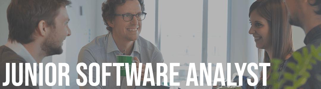 Software analyst